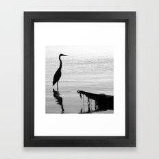 Black and White Heron Framed Art Print