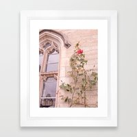 Rose Window Framed Art Print