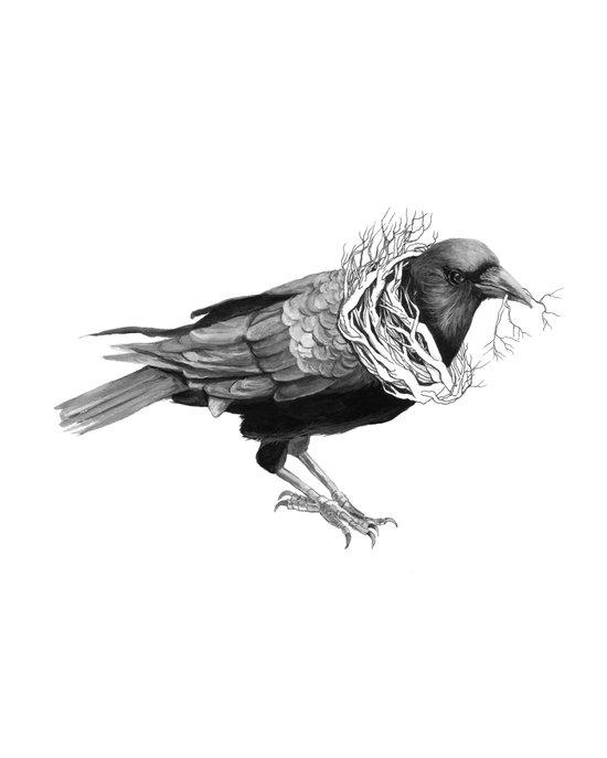 The Crow - Tangled Art Print