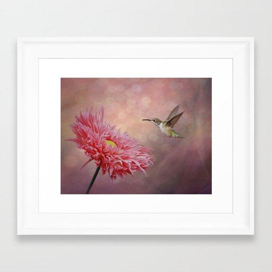 A Hummingbirds Dance Framed Art Print