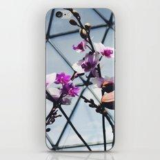 Garden Life iPhone & iPod Skin