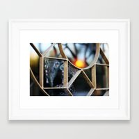 The Fence, The Spiderweb… Framed Art Print