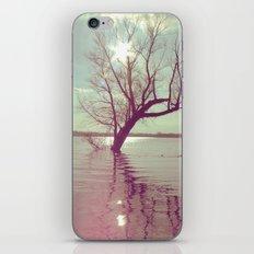 Peaceful Lake! iPhone & iPod Skin