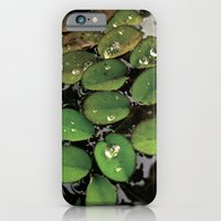 iPhone & iPod Case featuring Mini Water Lilies and Water Bug by Robert Wacker