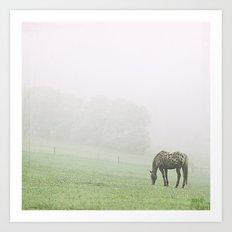 Leopard in the mist.  Art Print