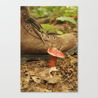 Mushroom Canvas Print