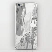 Dragon Falls  iPhone & iPod Skin