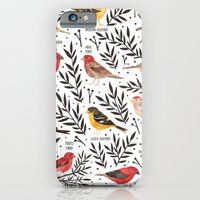 Finches of North American Field Guide iPhone 6 Slim Case