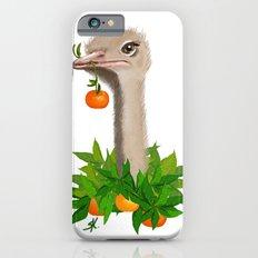 Mandarin iPhone 6 Slim Case