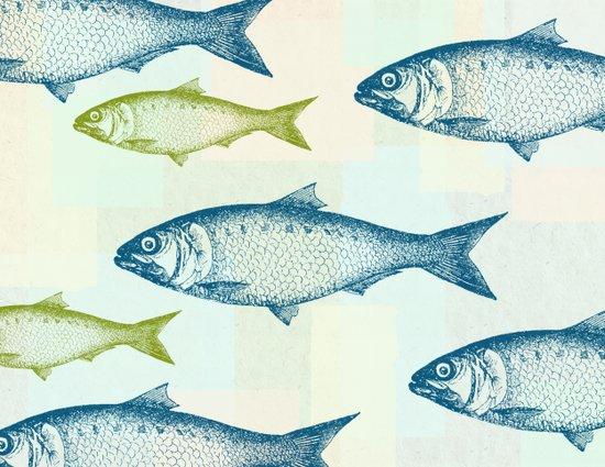 Vintage Fish Canvas Print