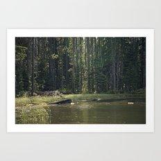 Mountain Pond Art Print