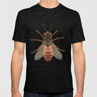 Bee (Abeille) Mens Fitted Tee Tri-Black SMALL