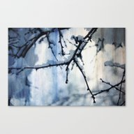 Snow And Water Canvas Print