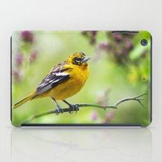 Spring Oriole iPad Case