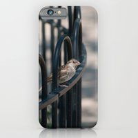 What Are You Looking At iPhone 6 Slim Case