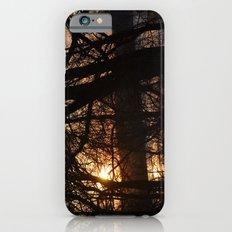 Winter Sun and River iPhone 6 Slim Case
