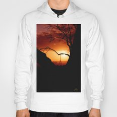 Sunset in Paris Hoody