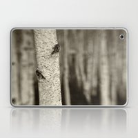 Silver Birch Laptop & iPad Skin