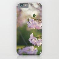 Cherry Tree Gorgeousness iPhone 6 Slim Case
