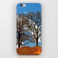 Brazilian landscapes iPhone & iPod Skin