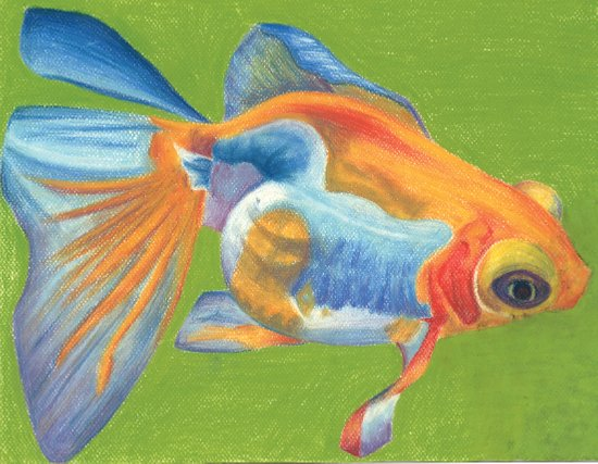 Telescope Eyed Goldfish Art Print