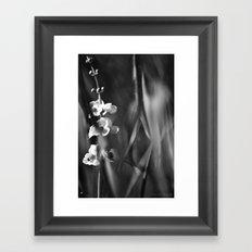 Busy Bee's Framed Art Print