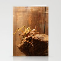 Insects Mate Stationery Cards