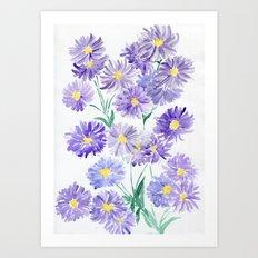 Summer Asters Art Print