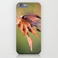 iPhone & iPod Case featuring leaf by Aaron Mallory