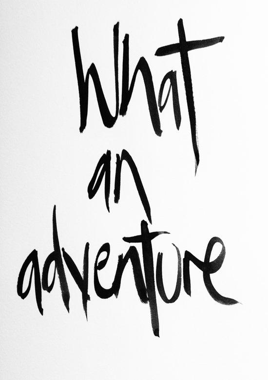 What an adventure  Art Print