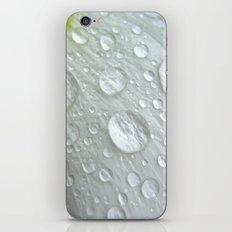 white petal drops iPhone & iPod Skin