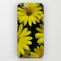 Yellow Flowers After the Misting iPhone & iPod Skin