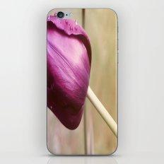 Tulip flower  , Tulip flower  games, Tulip flower  blanket, Tulip flower  duvet cover,  iPhone & iPod Skin