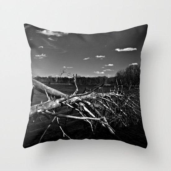 Obitus Throw Pillow