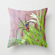 Spider in the Garden Throw Pillow