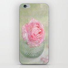 single  iPhone & iPod Skin