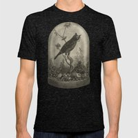 The Curiosity  Mens Fitted Tee Tri-Black SMALL