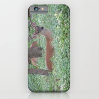 iPhone & iPod Case featuring Here's Looking at You! by grandmat