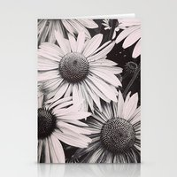 Sunlight Fading Stationery Cards