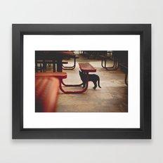 Inhabit Framed Art Print