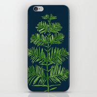Dawn Redwood iPhone & iPod Skin