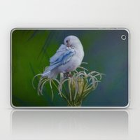 Preen Laptop & iPad Skin