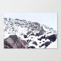 The Beauty of Silence Canvas Print