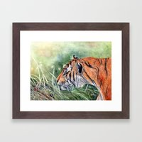 Bengal Tiger Framed Art Print