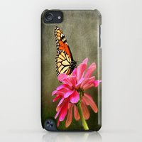 iPod Touch Cases featuring Monarch Butterfly and Pink Zinnia by Judy Palkimas