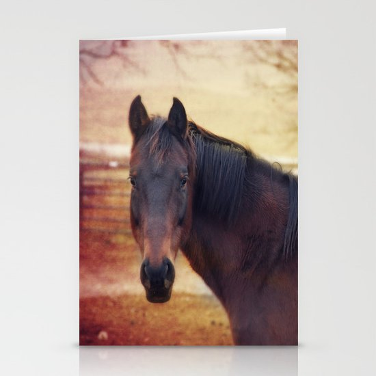 Horse Stationery Card