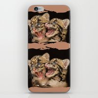 CLOUDED LEOPARD CUBS LOV… iPhone & iPod Skin