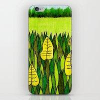 American Prairie iPhone & iPod Skin