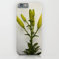 iPhone & iPod Case featuring Botanical Lily No. 7733 by Tricia McKellar