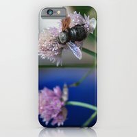 iPhone & iPod Case featuring Carpenter Bee 1 by Lou Gibbs